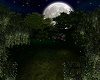 moon light garden