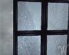 Window Winter Dream 2