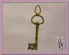 *AN* Senechals Key
