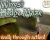Whyst Hedge Maze