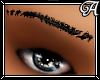 !A! Black Brows Detailed