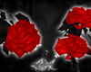 -LEXI- Roses | Red