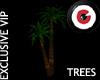 Palm Trees 3D