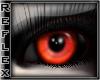 [R] Nightshade Red