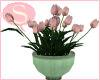 S. Tulip Bowl