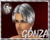 """""""GS"""" REEMI SILVER HAIR"""