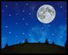 {Night Pines Hill}