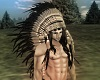 NativeAmerican Warbonnet