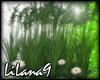 *LL* Wild Grass enhancer