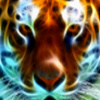 sticker_36401835_5