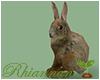 🌱 Ostara Bunny ll