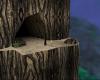 Mystic Tree Cavern