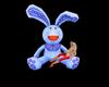 rabbit /coelho spot