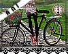 Flower Picking Bike