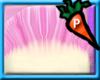 !Shiny Pachirisu Base