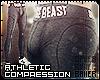 Compression Pants Grey
