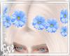 c Blue Daisy Crown