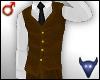 Classy brown vest (m)