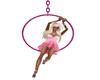 Pink Acrobate Swing