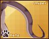 [Pets] Kaisila   tail v1