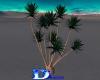 1516  Yucka Tree