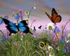 ButterfliesWildflowers
