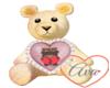 Teddy Sorry