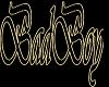 BADBOY SWING CHAIN