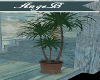 {AB} Ocean Breeze Plant
