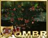 QMBR Flowering Bush O