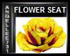 YELLOW ROSE SEAT
