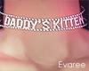 Daddy's Kitten Choker