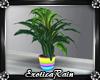 (E)Kawaii Pet: Plant