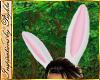 I~Anim Bunny Ears
