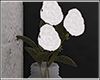 ♛ Flowers .
