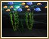 Neptune Seaweed