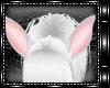 + White Rabbit Ears