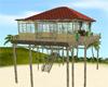 Beach House w/poses
