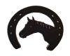 3D Horse Shoe
