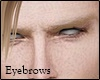 Blond Eyebrows