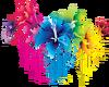 Rainbow Flowers (LG)