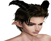 Forest Faun 2