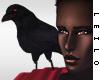 ! L! Talib ~ Crow