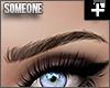 + curve kd brows brown