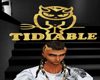 Gold HeadSign TiDiable