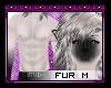 Siamese Fur [M]