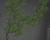 ᴍ| Overgrown.