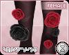 . mina   rose legs