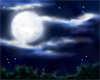 Night Sky Dome