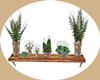 planta de pared
